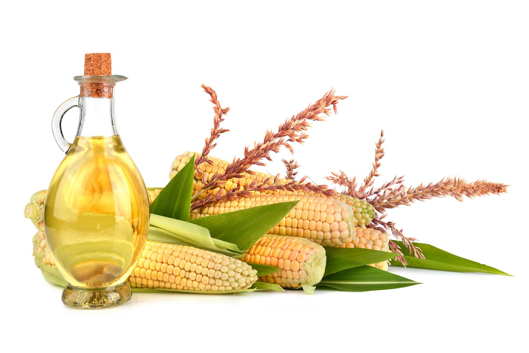 Кукурузное масло: польза и вред, применение в кулинарии и 43
